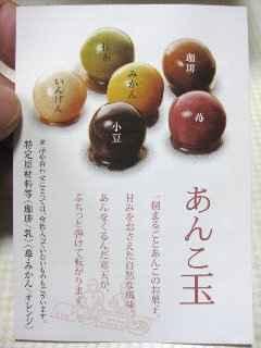 imoyoukan05.jpg