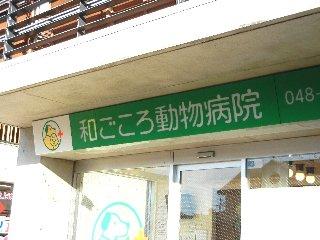 wagokoro.jpg